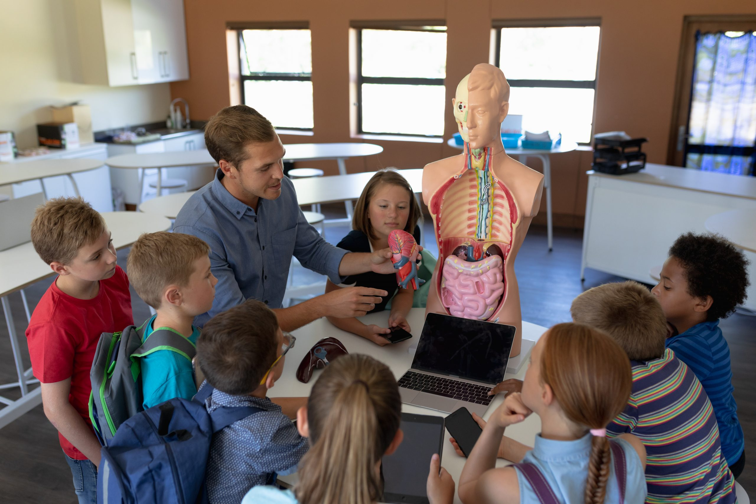 High angle view of a Caucasian male teacher using a human anatomy model to teach a diverse group of elementary school children about human organs during a biology lesson, the children sitting in a circle and listening while he talks, holding a model of a human organ